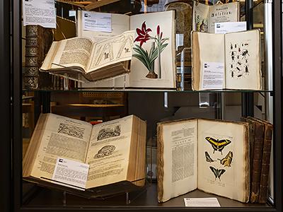 Alte Bücher Naturwissenschaft EOS Buchantiquariat Benz - Zürich
